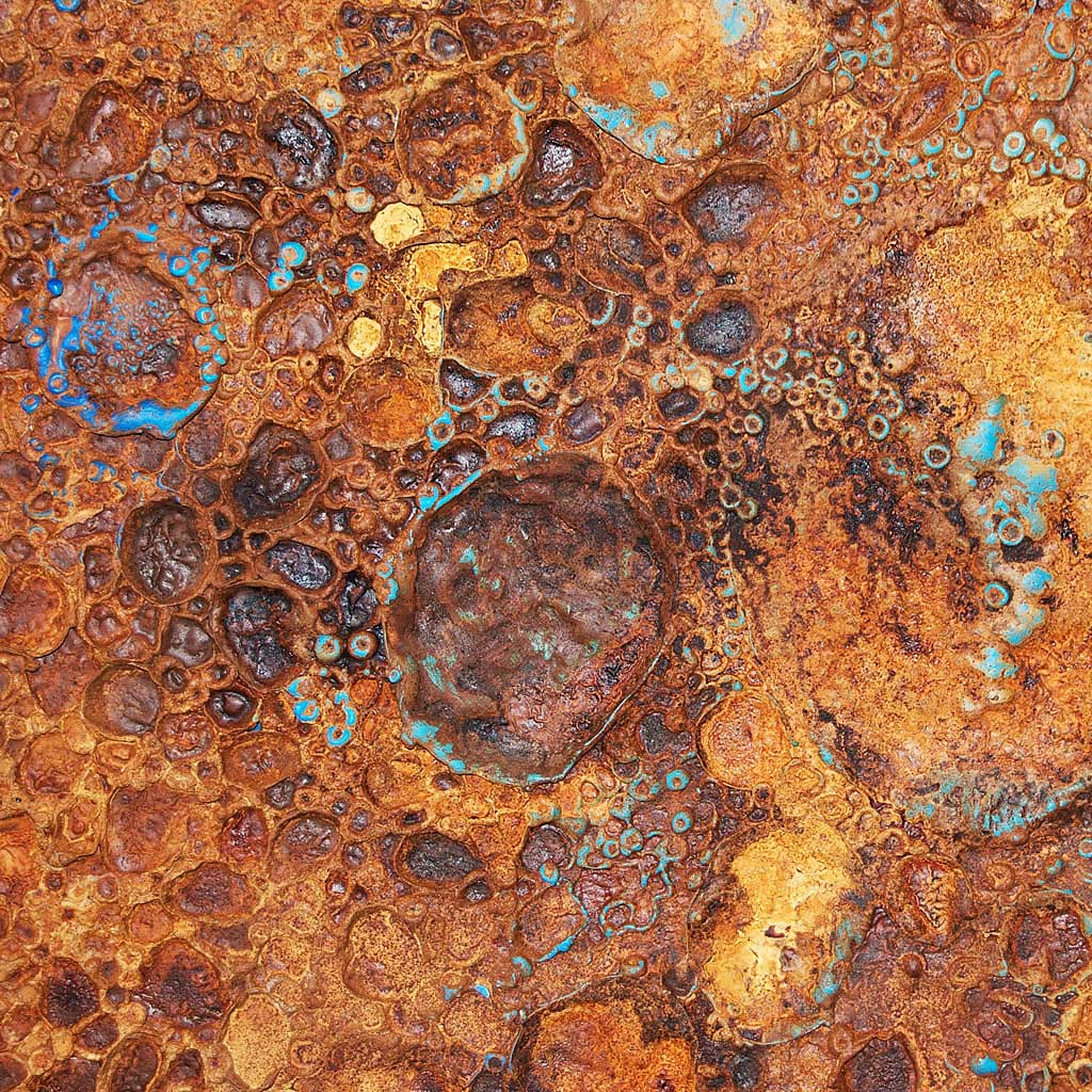 Hylozoic Surface IV Detail by Dan Pyne